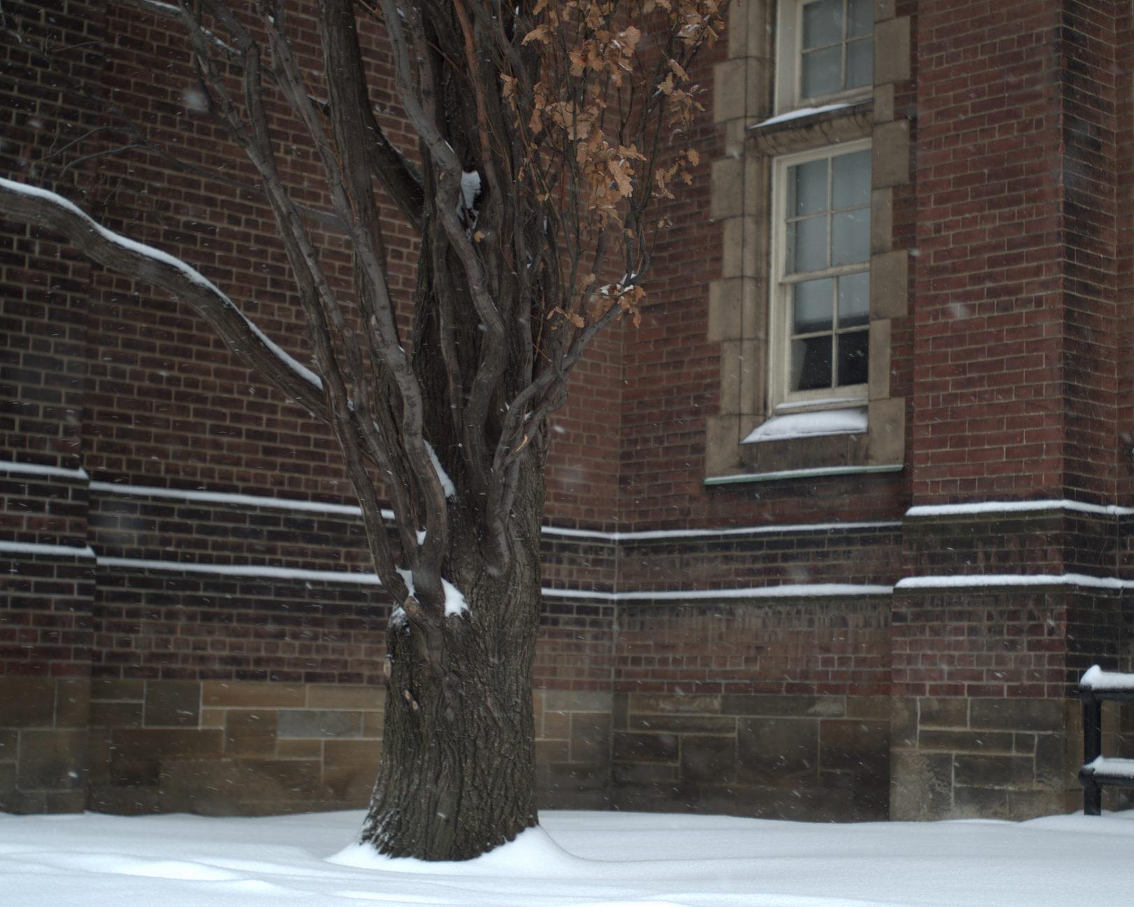 University of Toronto Schools, Bloor Street.